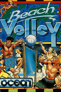 beach volley cover